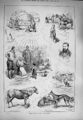 una-mungitura-russa-di-1884-del-campo-di-healtheries-nativi-del-cavallo