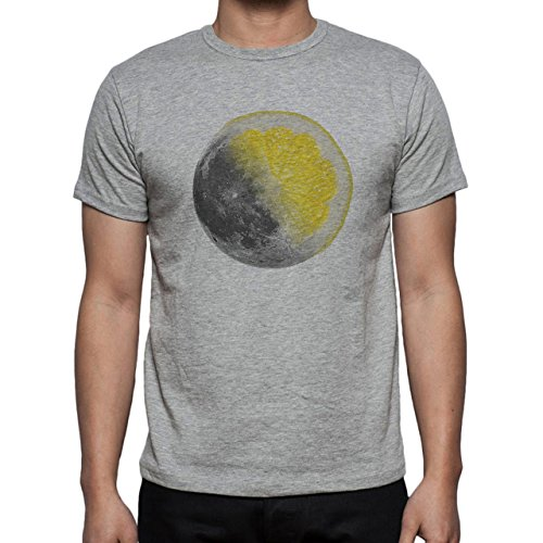 Moon Lemon Yellow Grey Strange Herren T-Shirt Grau