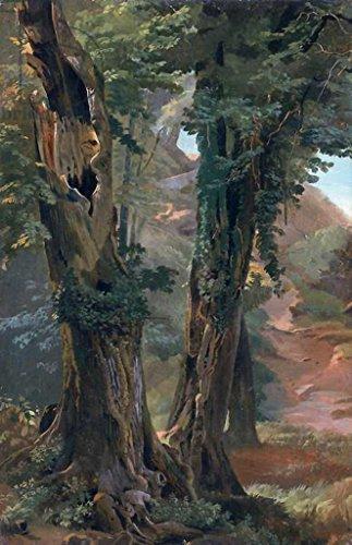 Kunstdruck/Poster: Friedrich Nerly Old Elms c 1835