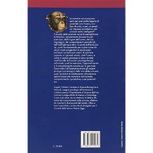 Il mondo delle scimmie. Ecologia ed etologia dei primati viventi