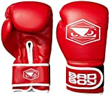 Bad Boy Boxing Gloves Review and Comparison