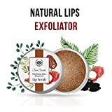 Lip Scrubs Review and Comparison