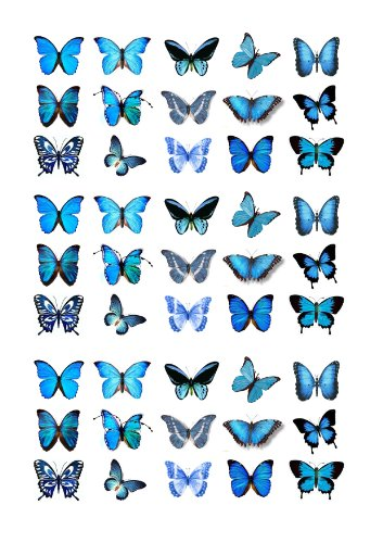 Cakeshop Basics 45 x Blue Butterflies Edible Cake Toppers - Premium Wafer Paper