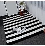Creative Light Schwarz-weiß gestreiften Plaid Einfach zu reinigen, Rutschfeste Kurze Fleece-Teppich Nachttisch Wohnzimmer Couchtisch Matte (Farbe : #5, größe : 80cm*185cm)