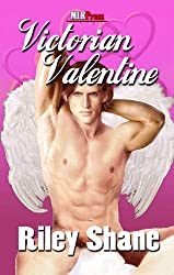 Victorian Valentine (Valentine's Day 2012 from MLR Press Book 14) (English Edition)