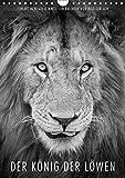 FineArt in Black and White: Der König der Löwen (Wandkalender 2018 DIN A4 hoch): Für diesen wunderschönen Planer hat Ingo Gerlach besten Löwenbilder ... [Kalender] [Apr 01, 2017] Gerlach, Ingo