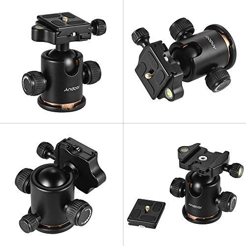 Andoer-Ballhead-Testa-sferica-con-Piastra-Rilascio-Rapido-Camera-Treppiede-Nero-Monopod-per-fotocamera-SLR