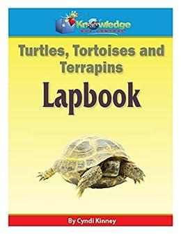 Turtles, Tortoises, & Terrapins Lapbook: Plus FREE Printable Ebook ...