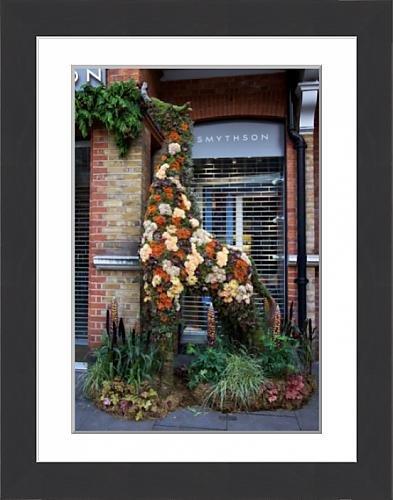 framed-print-of-smythsons-floral-giraffe-2017