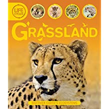 Life Cycles: Grassland