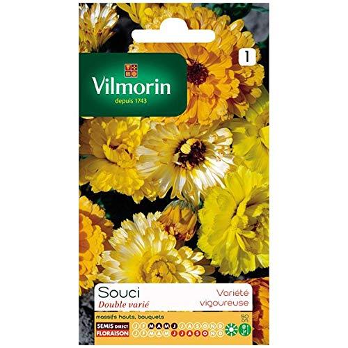 Vilmorin - Sachet graines Souci double varié