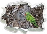 pappagallo verde nel formato autoadesivo del legno, carta da parati 3D: 92x67 cm decorazione della parete 3D Wall Stickers parete decalcomanie