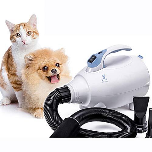 Peluquería Mascotas Secador Pelo Gato Alta Velocidad