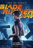 Poster Blade Runner 2049 Movie 70 X 45 cm