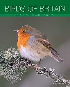 Birds Of Britain Medium Wall Calendar 2015