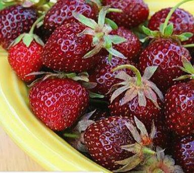100pcs / sac 24 sortes de fraises Collection graines de fraises de fruits géant bonsaï pot non-OGM bio pour plantes de jardin à la maison 22