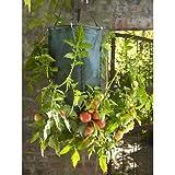 Parasene Qualität über & Unter Upside Down Tomaten Übertopf
