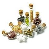 SET Mini-Fläschchen in verschiedenen Designs aus Echtglas mit Korken für Dekoration, oder als Puppenfläschchen - Marke Ganzoo (10er Set)