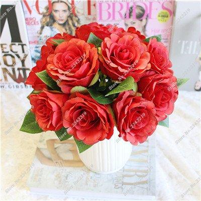Exotique Miniature Bonsai Fleur Rose Rosas Graine Bricolage jardin et maison embellissant de purification d'air 110 Pcs/Sac 18