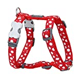 Red Dingo GmbH 9330725051164 Petral Perro Spots, M, Blanco