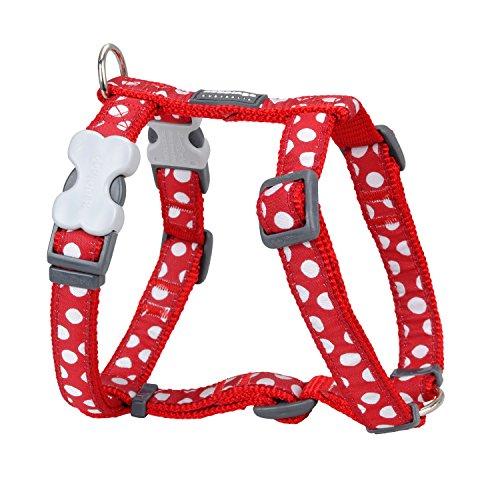 Red Dingo GmbH Spots - Collar para perro