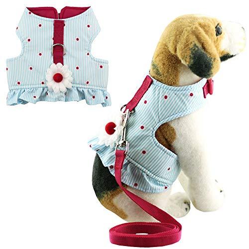 Bolbove Weiche Pet Lovely Daisy Streifen Weste Geschirr Leine Set Katzen Hunde blau, Medium, - Pudel Rock Girl Kostüm