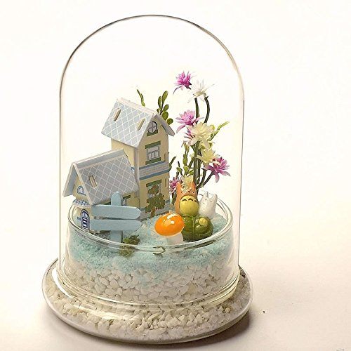 Cristal Campana cúpula terrario contenedor bandeja de pantalla Miniat