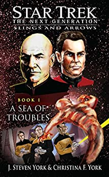 A Sea of Troubles: Slings and Arrows #1 (Star Trek: The Next Generation) by [York, J. Steven, York, Christina F.]