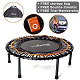 FIT BOUNCE PRO - Best Seller - NOW WITH FREE 3 MONTH MEMBERSHIP - Half Folding, High Quality, Bungee Sprung Mini Trampoline, Includes Storage Bag, Bounce Counter, DVD