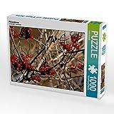 Felsenbirne 1000 Teile Puzzle quer (CALVENDO Natur)