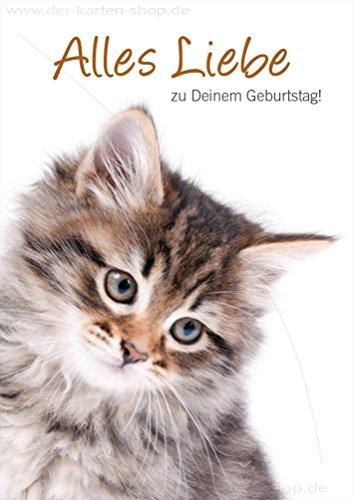 ᐅᐅ Geburtstagskarten Mit Katzen Im Vergleich Jan 2019