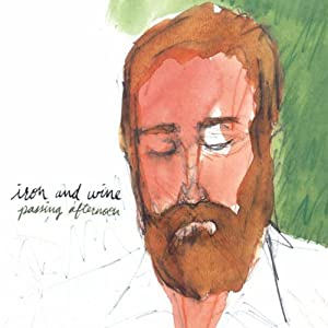Iron & Wine In concert