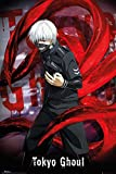 Tokyo Ghoul - Ken Kaneki - Manga Anime Poster Plakat Druck- Größe 61x91,5 cm + 1 Ü-Poster der Grösse 61x91,5cm