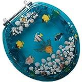 Confort Sièges c1b6r9-aqch Abattant de WC en acrylique avec une fermeture avant et charnières chromées, aquarium