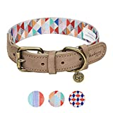 Blueberry Pet Shades of Rainbow Multicolor Triangles Polyester Fabric Webbing and Soft Genuine Leather Dog Collar, Small, Neck 30.5cm-38cm, Adjustable Collars for Dogs