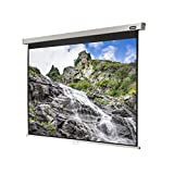 celexon Rollo-Leinwand Professional  Format 4:3  Nutzfläche 280 x 210 cm  Beamer-Leinwand geeignet für jeglichen Projektortyp, Full-HD und 3D-Leinwand  einfache Installation, gute Planlage