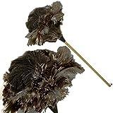 ProPassione Plumeau en vraies plumes d'autruche, manche en hêtre vernis, lacet cuir, dimension: L 90 cm