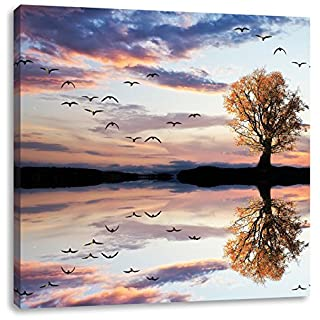 Lonely tree reflected in the water 40x40 cm canvas print decoration
