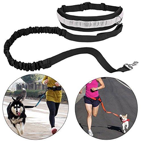 Cinghia Elastica Running dog Guinzaglio Piombo Sport Jogging Walking Collare Dell'animale Domestico Corda mano Libera vita del Cane Guinzaglio set Spedizione Gratuita (nero)
