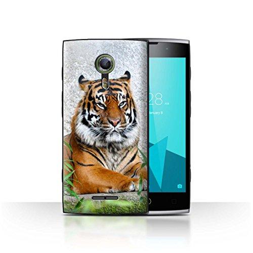 Stuff4® Hülle/Case für Alcatel Flash 2 / Tiger Muster/Wilde Tiere Kollektion