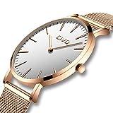 CIVO Herrenuhr Herren Damen Unisex Uhren Ultra Dünne Minimalistische mit Edelstahl Mesh Armband Wasserdicht Luxus Mode Armbanduhr Elegant Geschäfts Beiläufig Quarz Uhren (4 Roségold/Weiß)