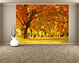 selbstklebende Fototapete - Herbst Szene - 155x100 cm - Tapete mit Kleber – Wandtapete – Poster – Dekoration – Wandbild – Wandposter – Wand – Fotofolie – Bild – Wandbilder - Wanddeko