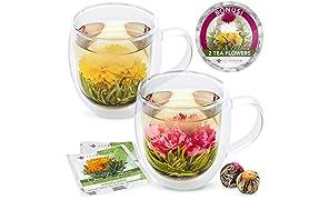 Teabloom Twin Harmony Doppelwandige Glasbecher & Blühende Teeblumen (Set mit 2 Tassen + 2 Teekugeln) - 550 ml Becher - Borosilikatglas - 2 Gourmet Grüntee Blumen enthalten