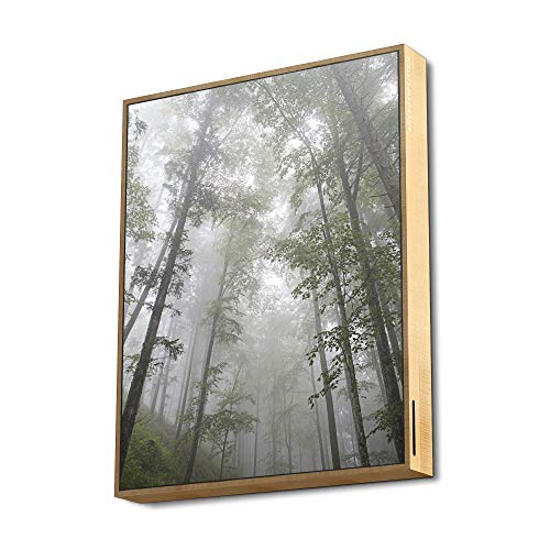 Frame Speaker Forest (50W, True Wireless, Bluetooth 5.0, USB/microSD MP3, FM