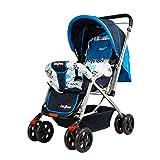 #3: Funbee Vista Premium Baby Stroller Pram-
