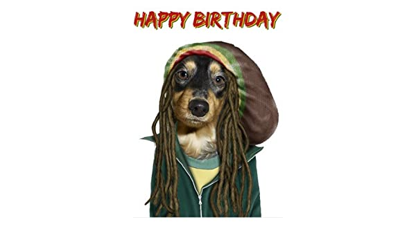 Reggae Pets Rock Dog Birthday Card Amazon Kitchen Home