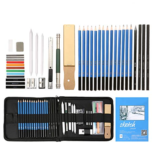 ARTISTORE 41pcs Set Bleistift zum Zeichnen Professional Charcoal enthält Taschen, Skizzenbücher, Holzkohle Bleistift, Buntstifte, Werkzeuge, für Profis und Anfänger -