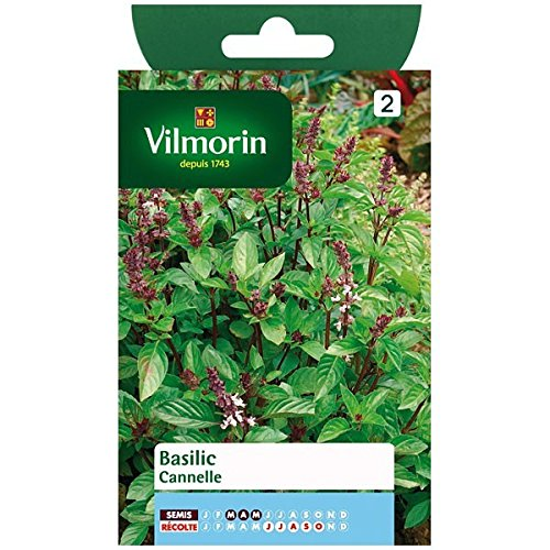 Vilmorin - Sachet graines Basilic Cannelle
