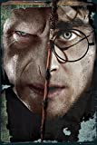 GB eye, Voldermort and Harry, Harry Potter, Maxi Poster, 61x91.5cm