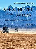 Verschleppt in der Sahara - In der Hand von Terroristen - ROMAN -